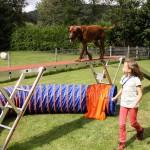 Ferienspiele - Mobile Hundeschule Hinterland; Foto: Sascha Valentin